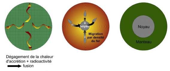 Schéma de la différenciation entre le noyau et le manteau : une Terre complètement fondue ségrège deux liquides immiscibles dont le plus dense migre vers le centre de la planète