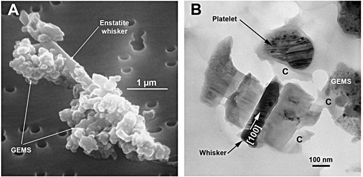 (A) Image en électron secondaire de l'IDP chondritique poreux U25A30B montrant un whisker d'enstatite (B) Image TEM en champ brillant de l'IDP CP U220A19. On peut y voir un whisker et un platelet d'enstatite ainsi qu'un GEMS et du carbone amorphe.