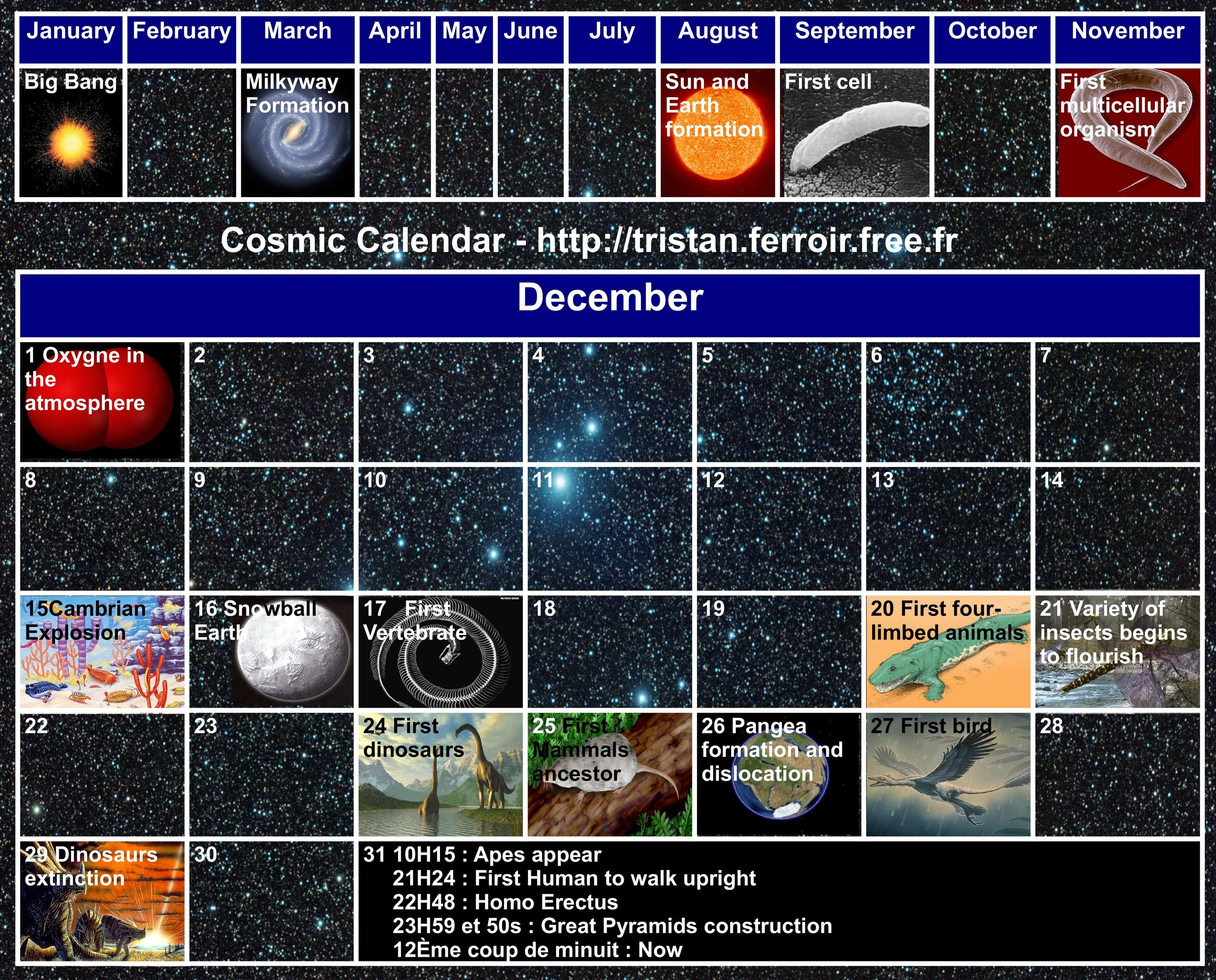 Cosmic Calendar : the history of the Universe seen over a one year period