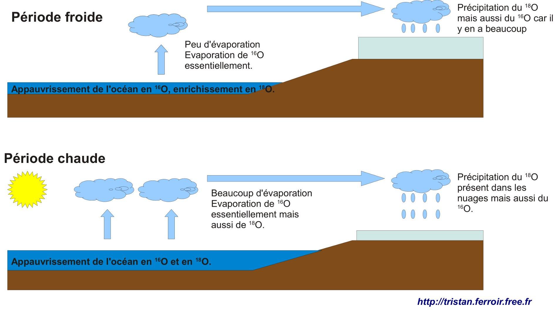 Figure expliquant les variations du delta 18 O en fonction de la témpérature au niveau des pôles et au niveau de l'océan et des formainifères